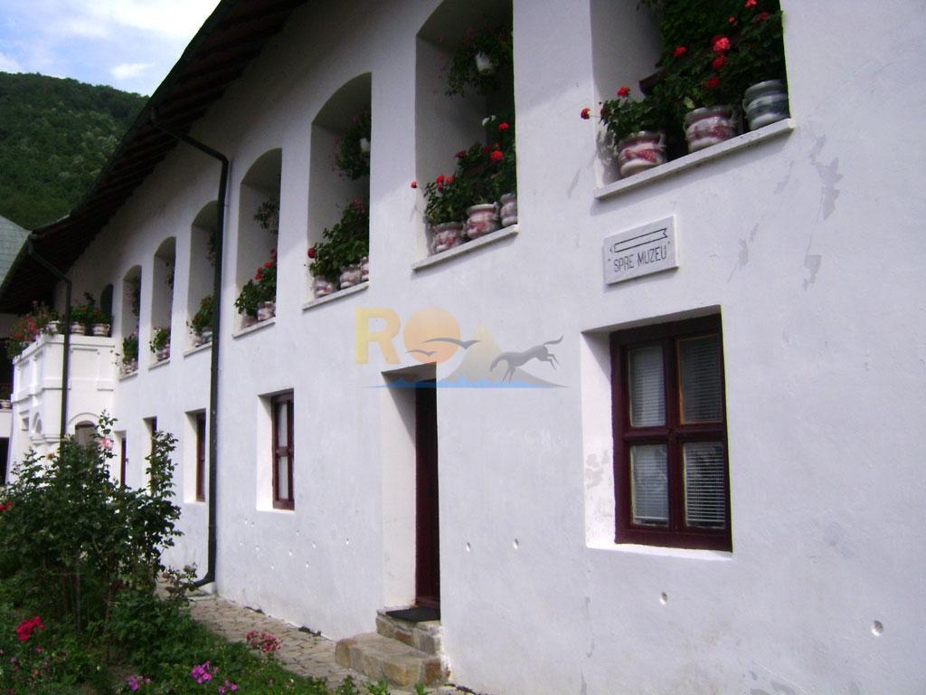 manastirea-cozia-10